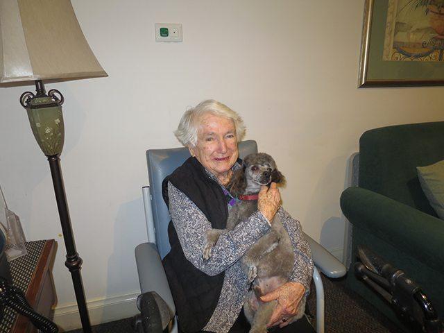 Arcare Aged Care Hilside Sydenham Dog 2