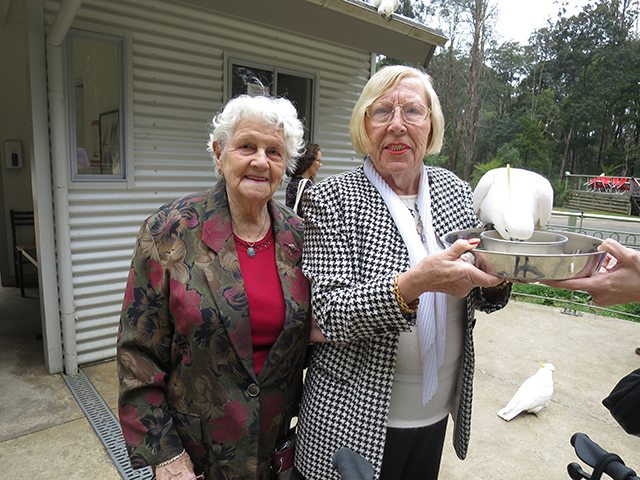 Image result for Knox Aged Care