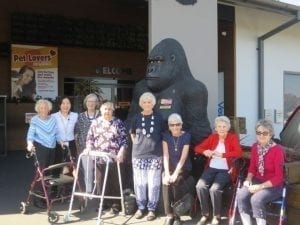 Arcare Aged Care Glenhaven Pet Store 1