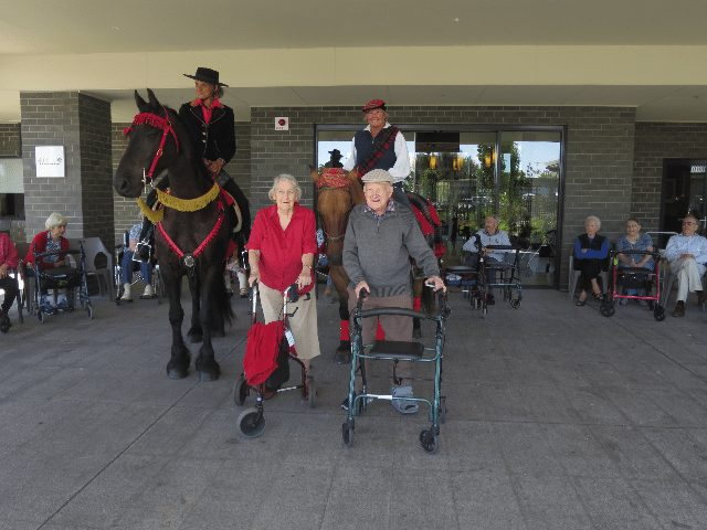 Arcare Aged Care Point Lonsdale Horses