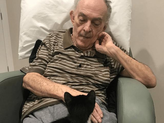 Arcare Aged Care Taigum Feline Friends