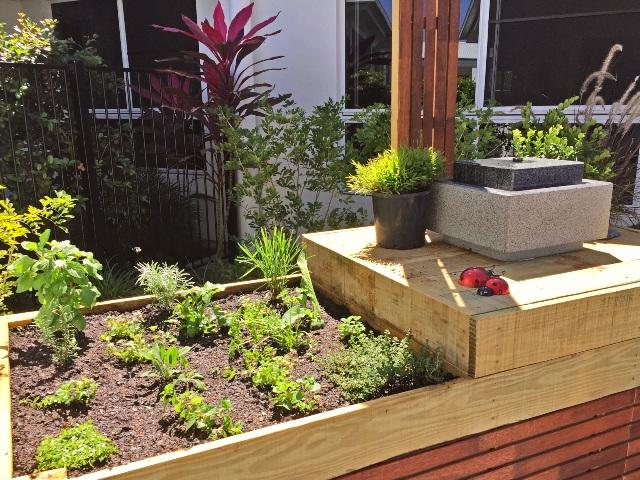 herbs plants garden zen