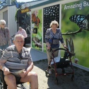 arcare_aged_care_caboolture_butterflies1