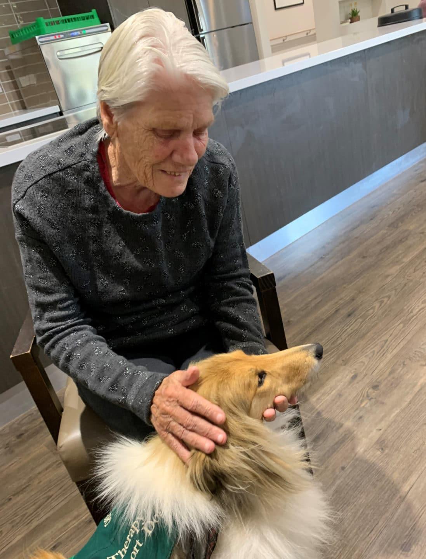 Arcare Aged Care Craigieburn Ivy Dog (2)