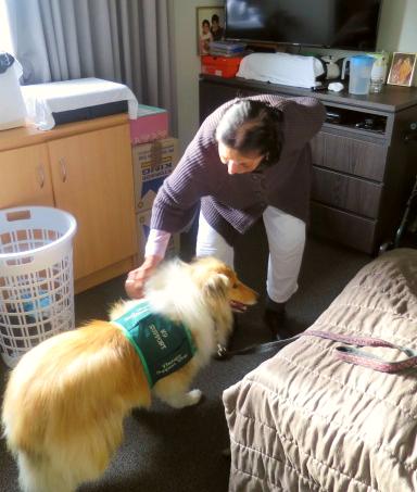 Arcare Aged Care Epping Ivy Dog