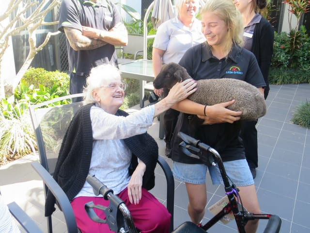 arcare_aged_care_maroochydore_critters2