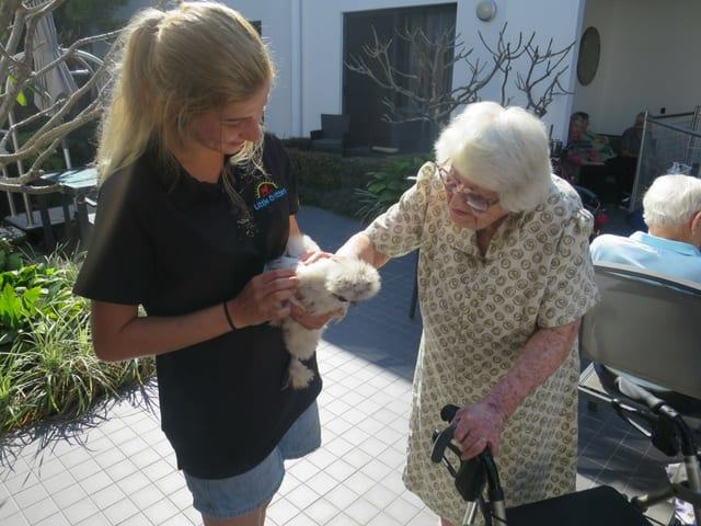 arcare_aged_care_maroochydore_critters3