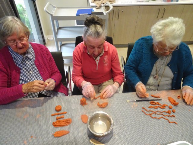 Arcare Aged Care Pointlonsdale Clayart