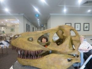 Arcare_Aged_Care_Caulfield_Dinosaurs