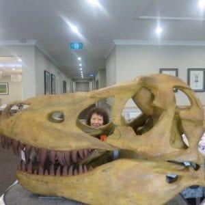 Arcare_Aged_Care_Caulfield_Dinosaurs
