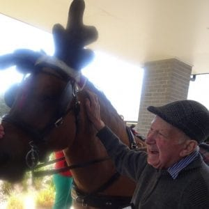 Arcare_Aged_Care_Point_Lonsdale_Horses_2